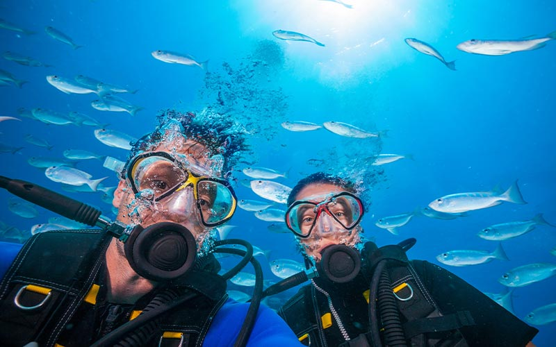 A male and female diver pose for the camera. Silver fish are in the background.