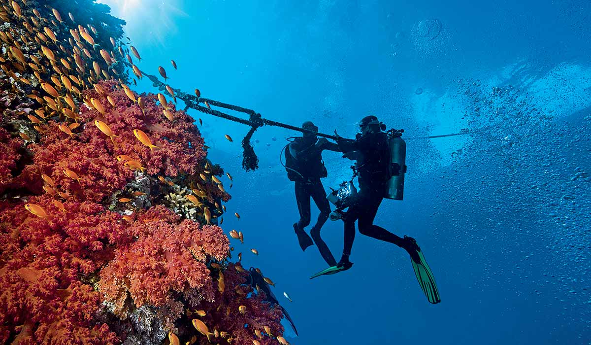 Two divers holding a mooring line next to reef