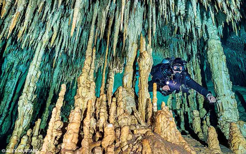 Diver swims through impressive-looking Dream Gate Cenote formations