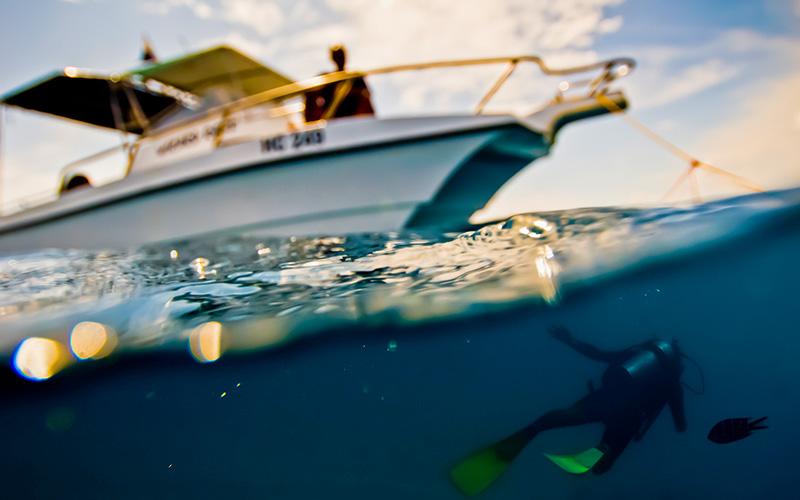 A diver floats near a boat
