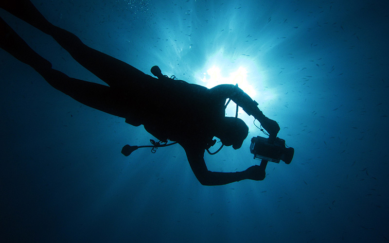 A diver swims overhead holding a camera