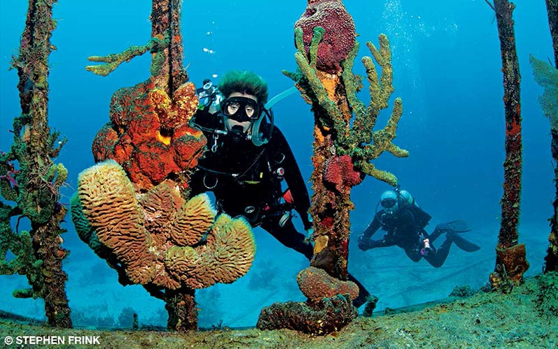 A female diver and her buddy explores a reef
