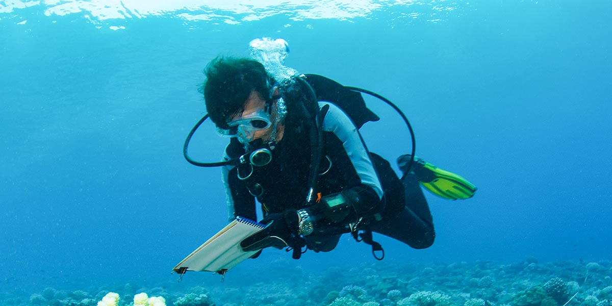 scuba diver blog 638510870 DAN 1200x600 1 - Plunging Into The World Of Open Water Diving