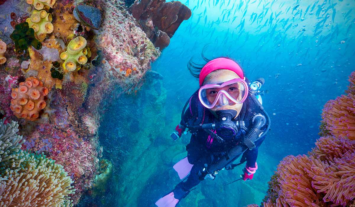 Female diver wearing purple fins swims next to a wall of coral