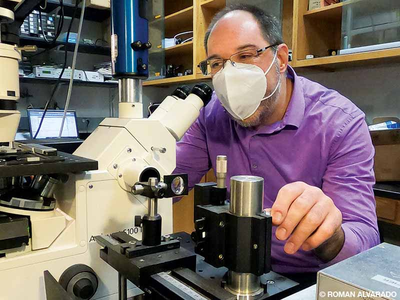 Meiners wearing a face mask and a purple shirt looks into a microscope.