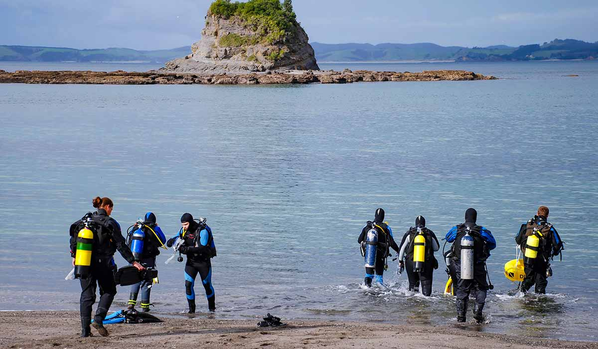 A group of divers walk into the ocean to start their dive