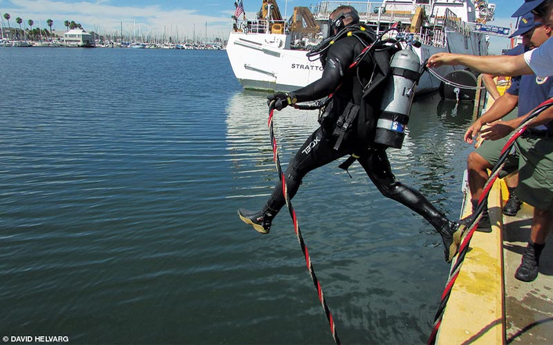 A U.S. Coast Guard Diver jumps off a dock and into the water