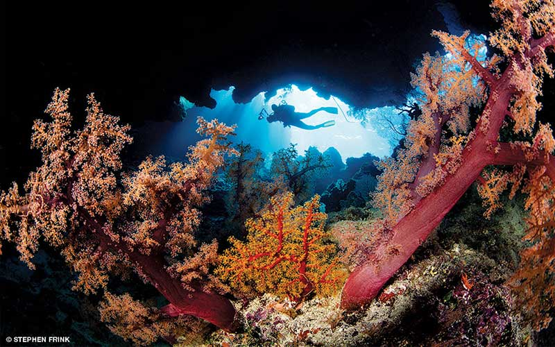 A diver holding a big underwater camera swims through a Fiji reef
