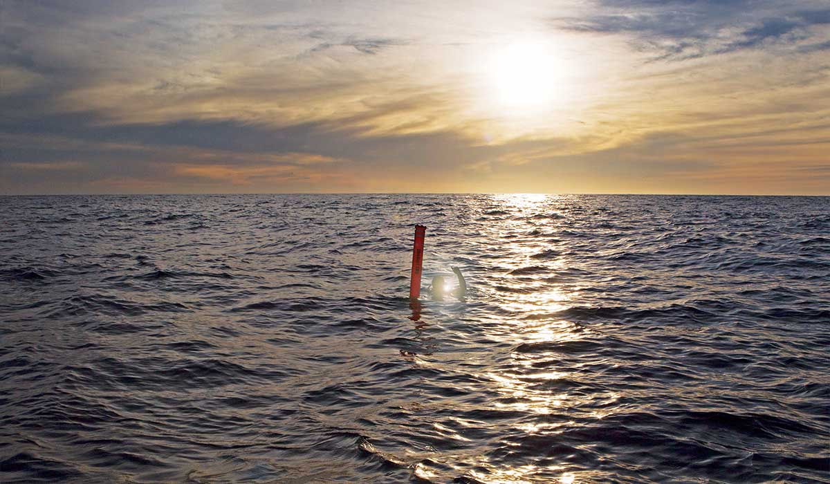 Diver wades next to red diver marker at sunset