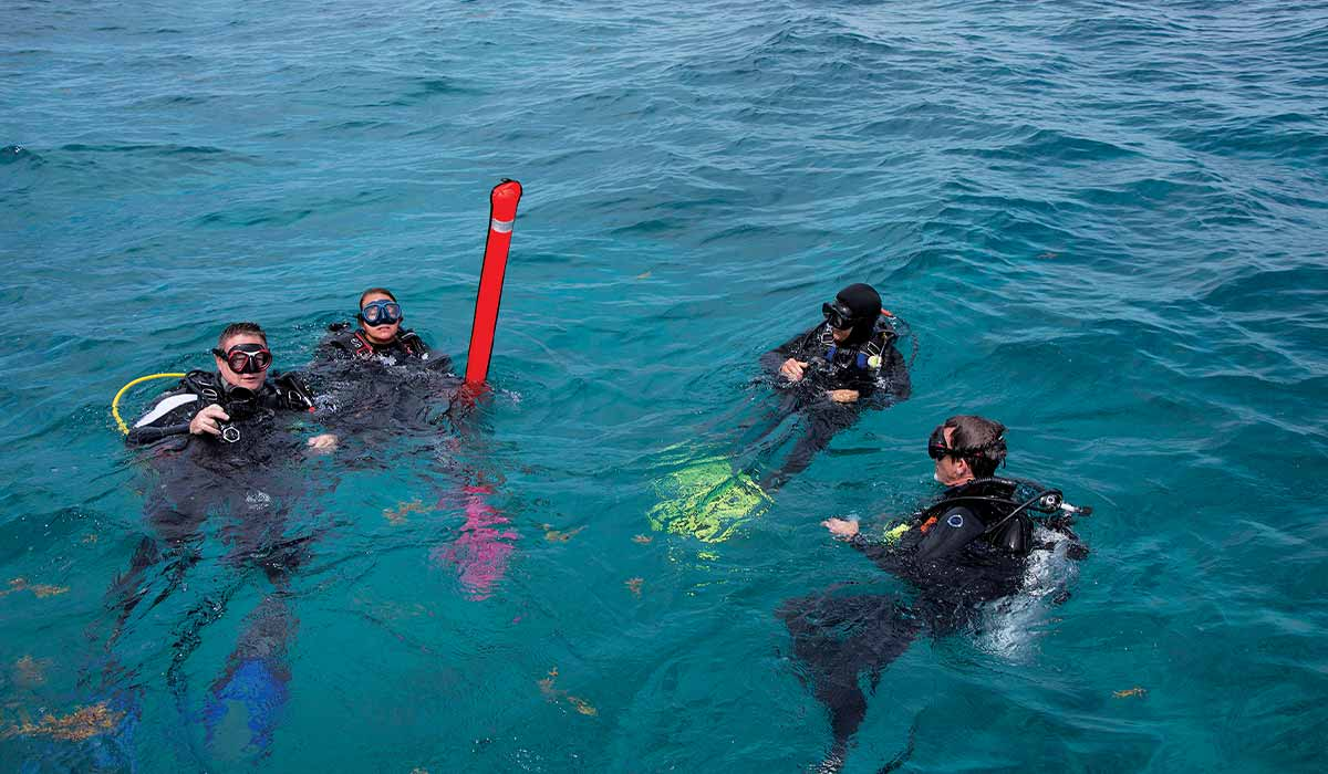 Four divers tread near red marker