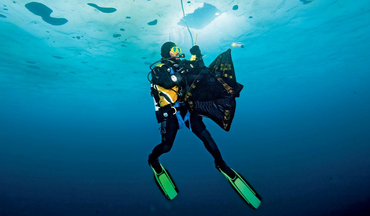 Scientific diver holds a black net