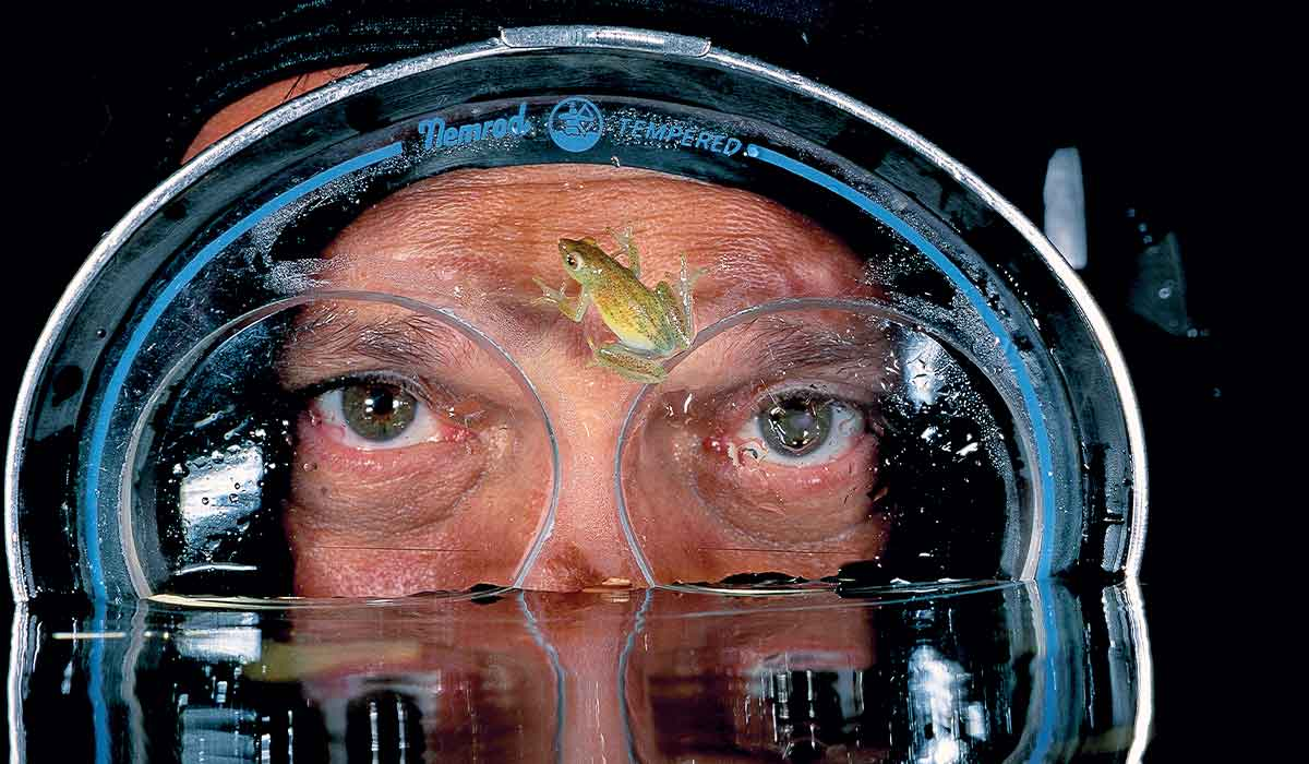 A tiny green frog stuck to the dive mask of a diver. Just his eyes are seen above the water