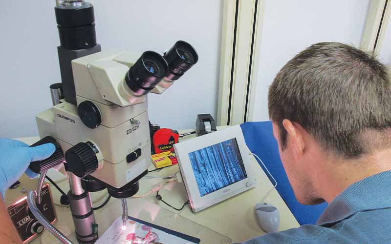 Engineer works with a microscope