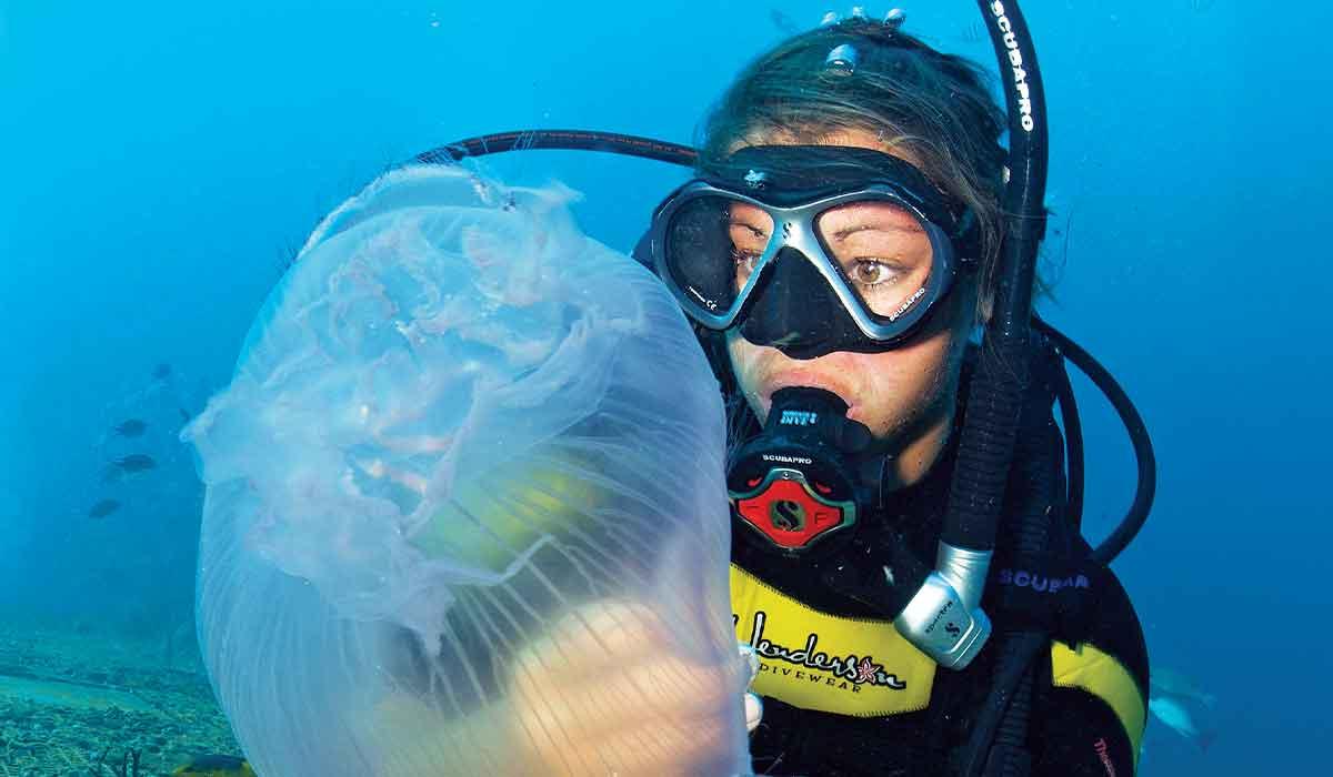Female scuba diver looks at a jellyfish