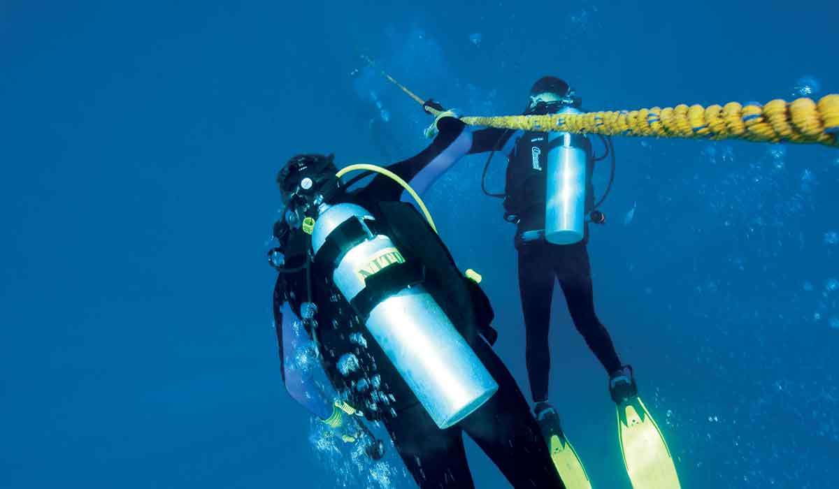 Two divers descend a yellow mooring line