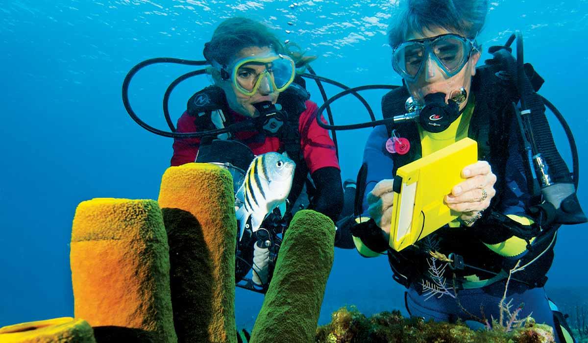 Two divers pause at coral review a checklist