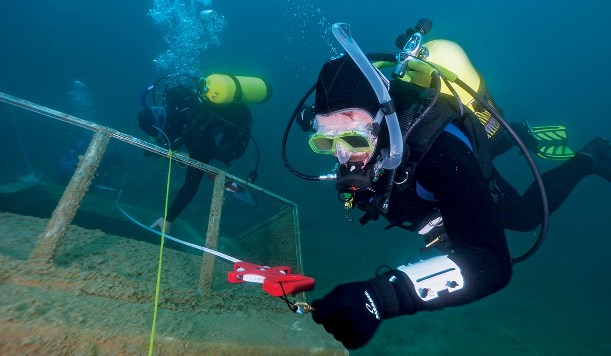 Two research divers float near shipwreck